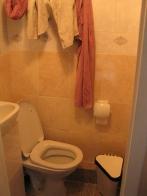 Toilet #8